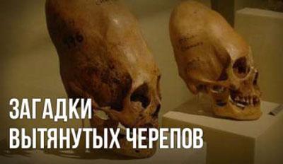 Игорь Соколов. Загадки вытянутых черепов