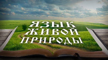 Андрей Кинсбурский. Язык живой природы