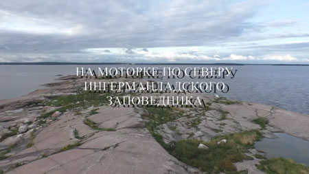 Сергей Салль. На моторке по северу Ингерманландского заповедника